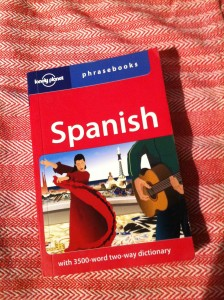 lonely planet spanish phrase book